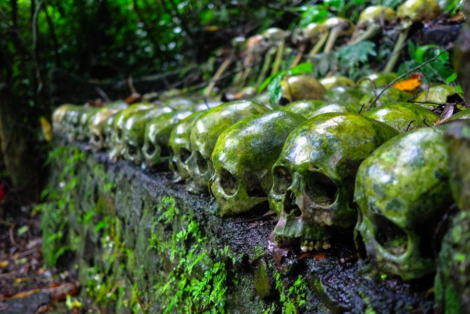 Six Unusual Traditions In Bali Indonesia Trip Jaunt